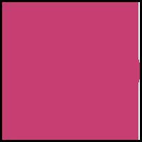 Privat jordemoder logo