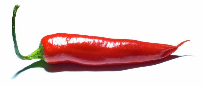 chiliplaster købe sælge jordemoder Stine Roswall